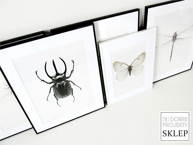 http://www.dobreprojekty-sklep.com/10-artprinty