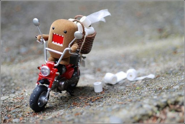 domo bikingThe Roads, Toilets Paper Rolls, Speed Racers, Domo, Fit Diet, Funny, Parties Favors, Design Bags, Things