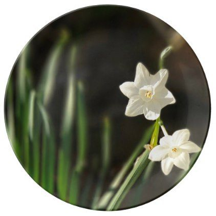 Paperwhites Porcelain Plate - kitchen gifts diy ideas decor special unique individual customized