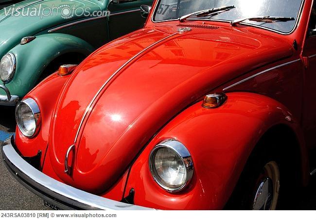 Italy, Lombardy, Meeting of Vintage Car, Volkswagen Beetles [243RSA03810]