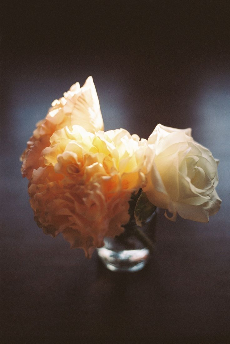 Simple ruffled rose bouquet on film