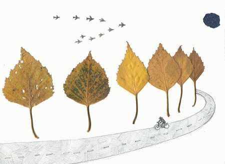 fall leaves decorations for kids rooms