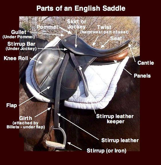 EnglishSaddleParts  Saddle  Wikipedia the free