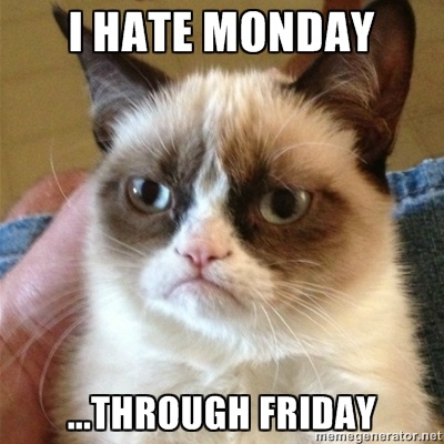 Grumpy Cat 1 - I hate monday ...through friday