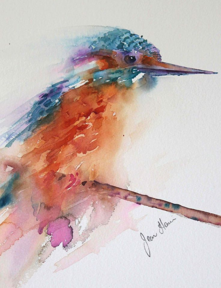 Kingfisher azul Jean Haines #watercolor jd