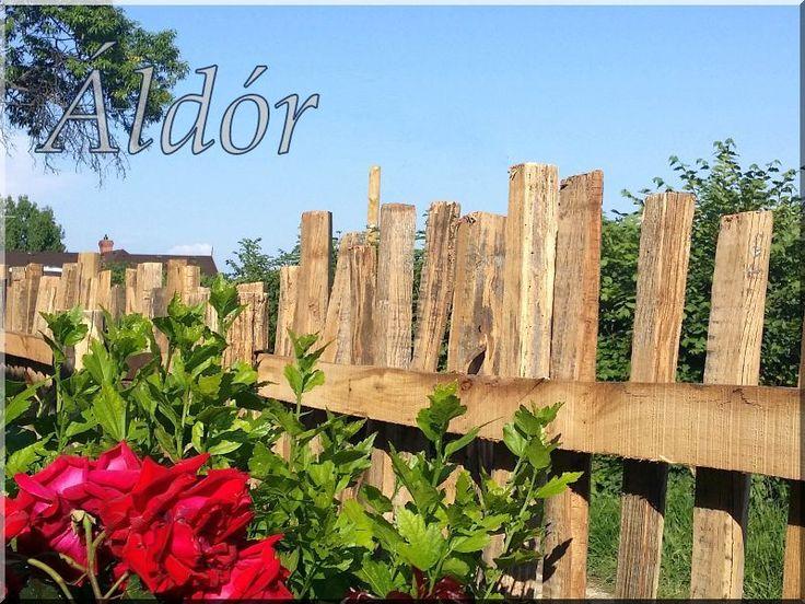 Kerítés akácfa karókból