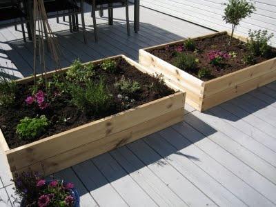 Plantekasser til urter, Plantasjen