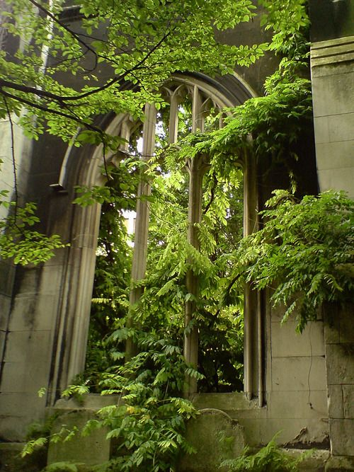 Hidden in the centre of London, the ruins of St-Dunstan-in-the-East, a church built in the eleventh century and severely damaged during The Blitz. The ruins were repurposed into this Victorian gothic dreamscape of a public garden, crawling with Virginia creepers and creepily atmospheric. This is a brilliant example of the beauty of beautiful decay.