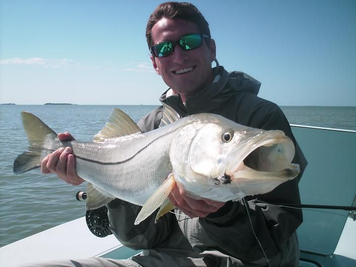 1193 best images about salt water fish on pinterest red for Snook fishing florida