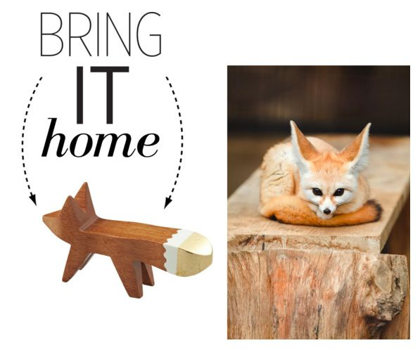 Ah, that animal magnetism....#BringItHome http://polyv.re/1zXSfwq pic.twitter.com/L3fopbaOBO