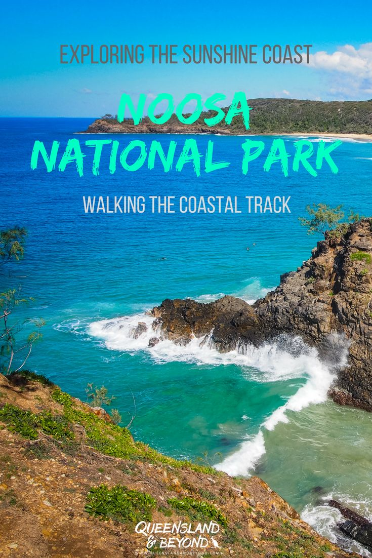 Noosa National Park offers some stunning walks, best of all the Coastal Track. Steep cliffs, turquoise blue water and endless views of Sunshine Beach! | 🌐 Queensland & Beyond | #australia #sunshinecoast #walks #hiking #noosa