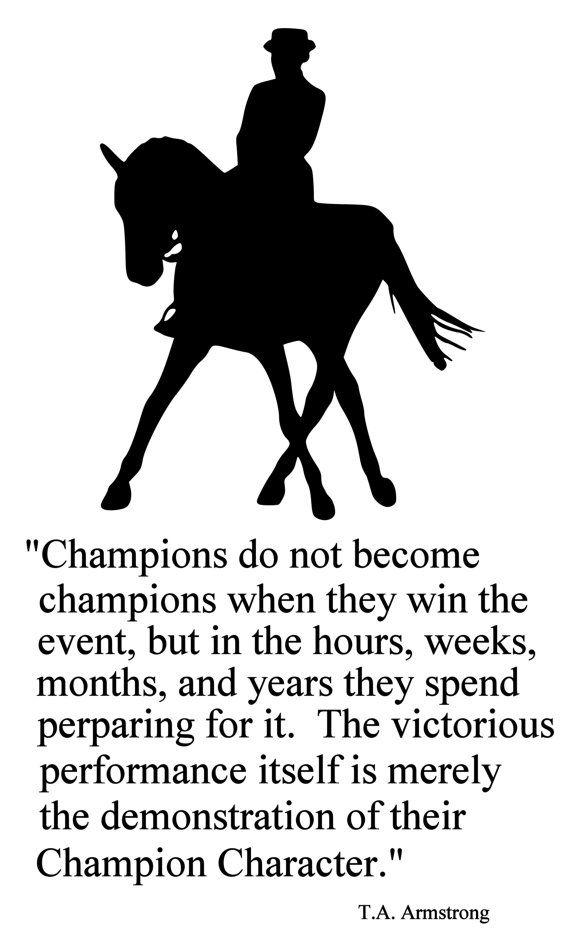 Horse-Horse decal-Quote-Horse sticker-Vinyl wall decal-28 X 47 inches on Etsy, $34.00
