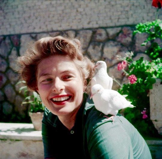 étés-en-hollywood: Ingrid Bergman
