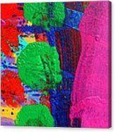 Ad Libitum Canvas Print