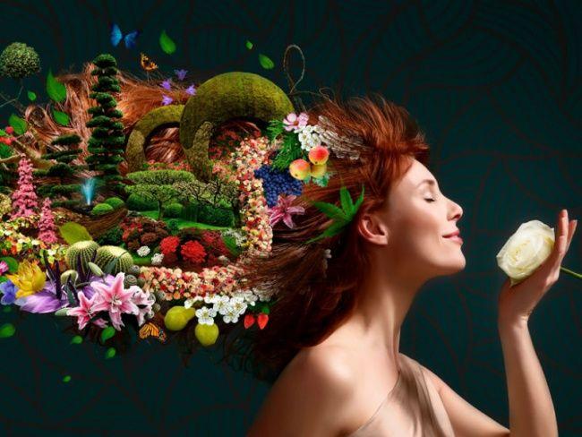 Roselily in FLORALIËN promotion image