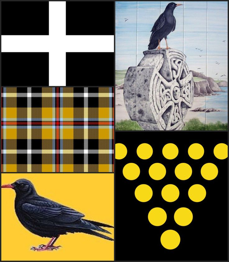 Cornish symbols: St Piran's Flag (white cross /black background); The Duchy of Cornwall shield of 15 gold bezants/black field. Black, white & gold symbolize Cornwall. In Cornish poetry the chough = the spirit of Cornwall; also it's a nickname for Cornish people. Anvil = Cornish nationalism, esp. extreme. Fish, tin & copper are traditional main industries. Flowers: broom, furze (gorse), rhododendron, many favour Cornish heath (Erica vagans). Tree = sessile oak/Cornish oak. Dish = Cornish…
