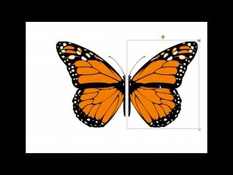 ▶ Symmetria ja peilikuva - YouTube (video 6:26).