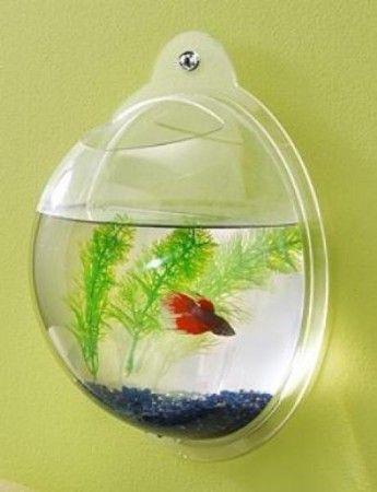 hanging fish bowl!Ideas, Kids Bathroom, Wall Mount, Fish Tanks, Aquariums, Kids Room, Pets Supplies, Fish Bowls, Finding Nemo