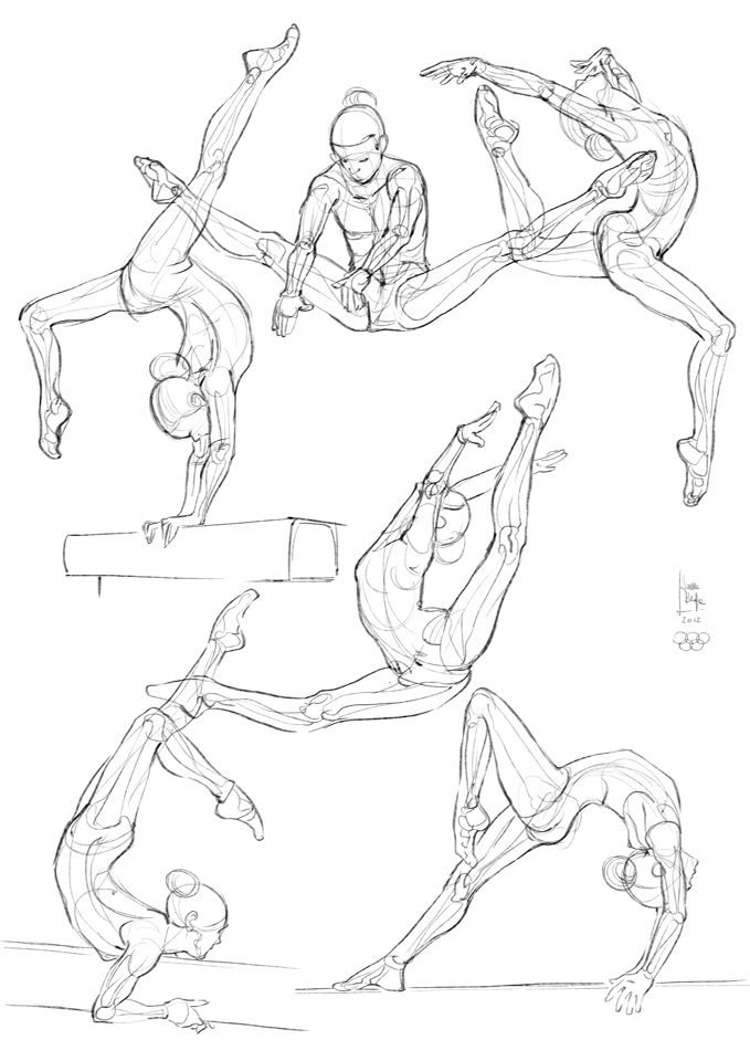 Gymnast studies and sketches