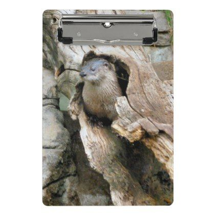 Harry Otter Mini Clipboard - animal gift ideas animals and pets diy customize