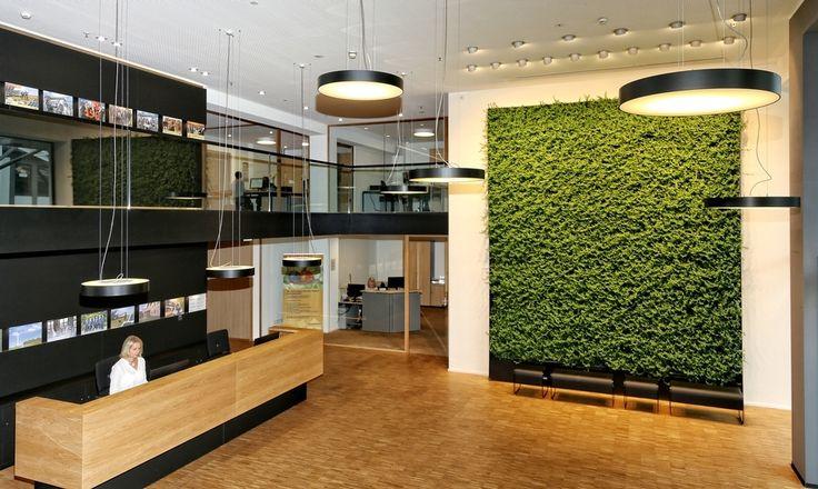Energiegenossenschaft Odenwald eG 4