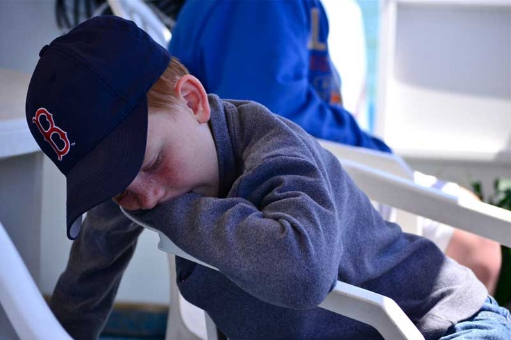 Tired little guy on a dolphin cruise. He was too tired to look for them!