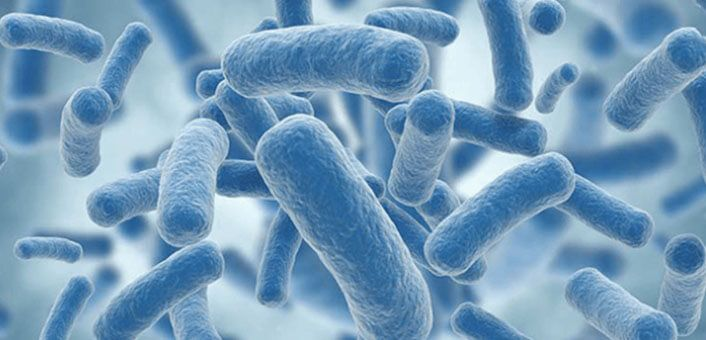 Antibiotics don't just kill the harmful bacteria, but also kill the good probiotic bacteria in the intestine.