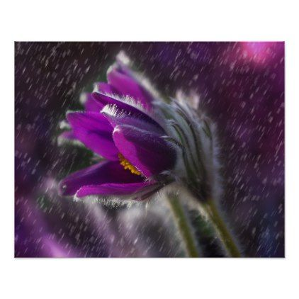 Flower Poster - diy cyo personalize design idea new special custom