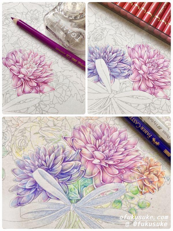 1 色鉛筆で透けてるお花風の塗り方紹介です なぞり絵より 塗り絵日記 2020 花 色鉛筆 色鉛筆 塗り絵