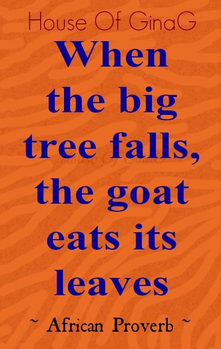 """""""When the big tree falls, the goat eats its leaves"""" ~ African Proverb ~ House Of GinaG"""