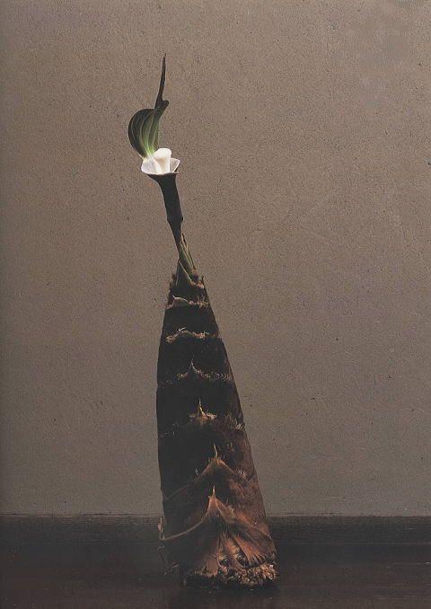 Ikebana by KAWASE Toshiro, Japan 川瀬敏郎