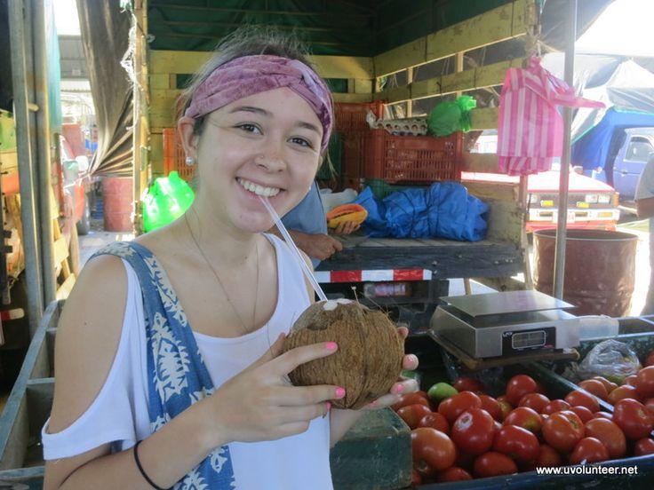 Coconut juice, delicious! https://www.uvolunteer.net/  volunteer opportunities, volunteer overseas, volunteer organization, volunteer opportunities abroad, volunteer work