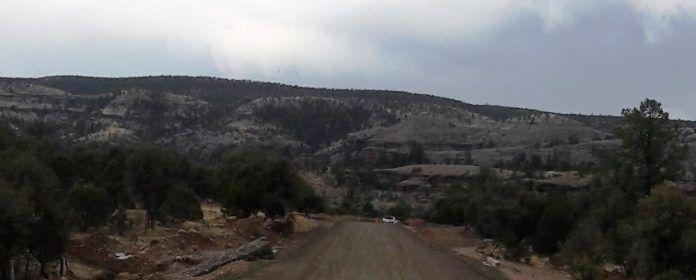 La Secretaria de Comunicaciones y Transportes (SCT) continúa con la construcción de la carretera Willy – Huachinera, que es considerado el más...