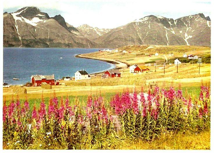 Troms fylke Lyngen kommune Lyngenfjord 1970-tallet Utg Aune