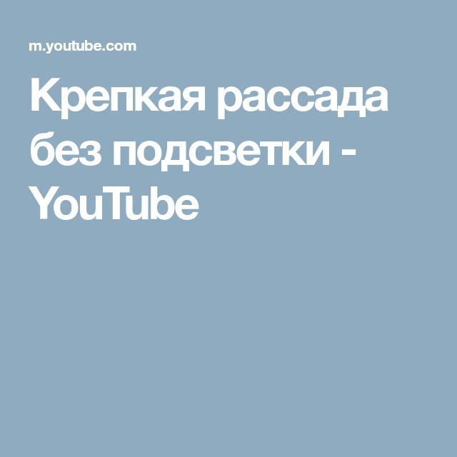 Крепкая рассада без подсветки - YouTube