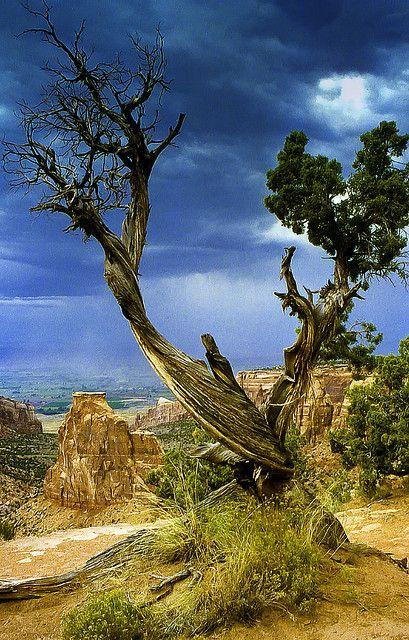 Storm at Colorado National Monument, Fruita, Colorado by bern.harrison