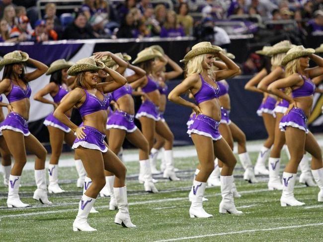 Les Cheerleaders des Minnesota ...