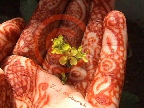 eid mubarak girl hand mehndi beautiful cool amazing 500x375 Eid Mubarak Blessing Wishes Quotes in English 2014