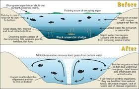 Image result for solar powered water aerator