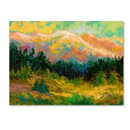 Trademark Fine Art 'Summer High Country' Canvas Art by Marion Rose, Size: 14 x 19, Multicolor