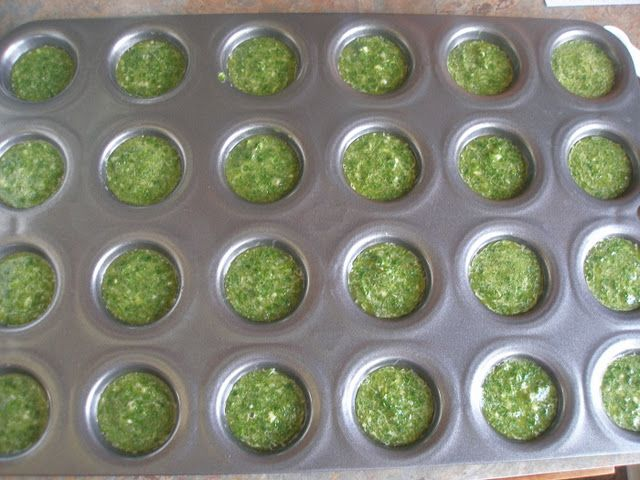 Preserving Cilantro - nice!  I buy it and throw half away because it ruins.  So doing this.: Juice Cups, Olives Oil, Minis Muffins, Freeze Cilantro, Muffins Tins, Preserves Cilantro, Sea Salts, Cilantro Sauces, Ice Cubes Trays