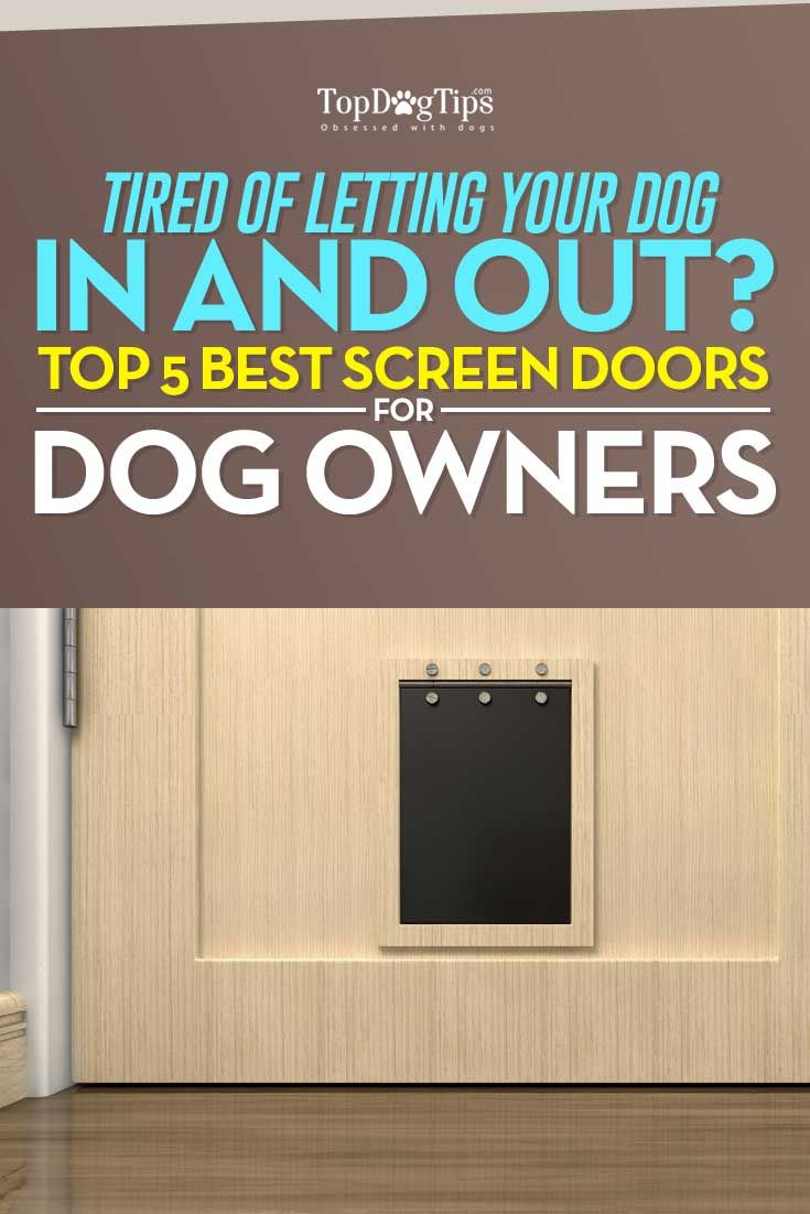 Best Screen Door with Dog Door: 2016 Ultimate Top 5 List. Dog parents with their own houses often choose to allow their pets, both dogs and cats, to go out or come in as they please. This is extremely convenient and freeing for everybody, but you need to use some of the best screen doors with dog doors in order to make this efficient. #dogs #dogdoors #doors #pets #petdoors