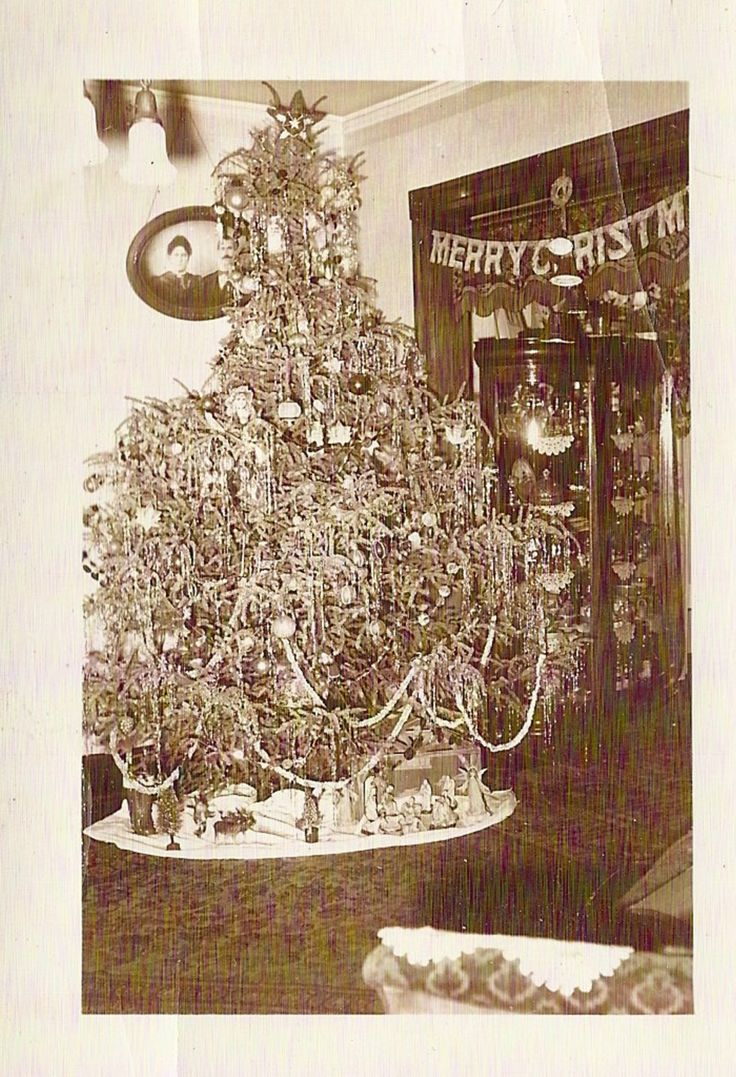 Vintage christmas trees and putzes 1910 - 1940s Real Christmas Photo Tinsel Decorated Tree Banner China Cabinet Ebay