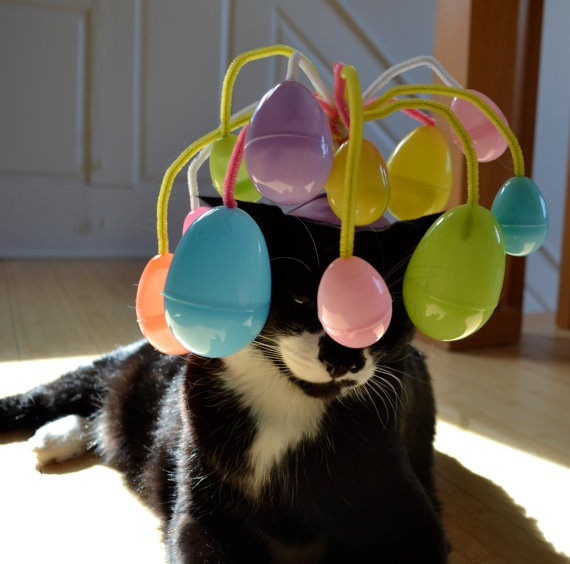 Easter Cat Hat / The Easter Egg Hunt Cat by NotsoKittyShop on Etsy, $17.00