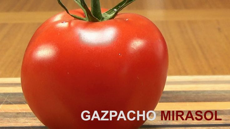 "Watch ""Gazpacho With Red Chile Mirasol"" on YouTube"
