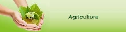 Take #Admission_to_BSc_agriculture, it is one of those courses which are widely explored in this present era. The main reason behind this is the growing importance of agriculture and the benefits of adding technology to it. It also includes the use of modern fertilizers for the improvement of crops.One needs to be +2 passed from any of the recognized boards with Science background in order to get admission.