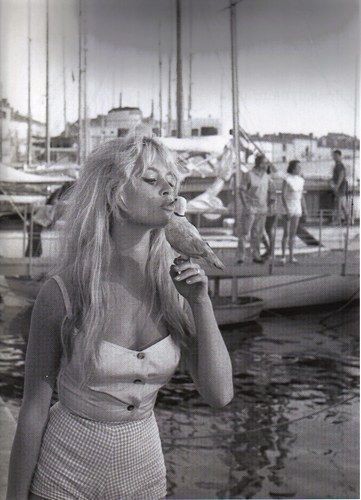 """""""I gave my beauty and my youth to men. I am now going to give my wisdom and experience to animals."""" ~ Brigitte Bardot   elephantjournal.com"""