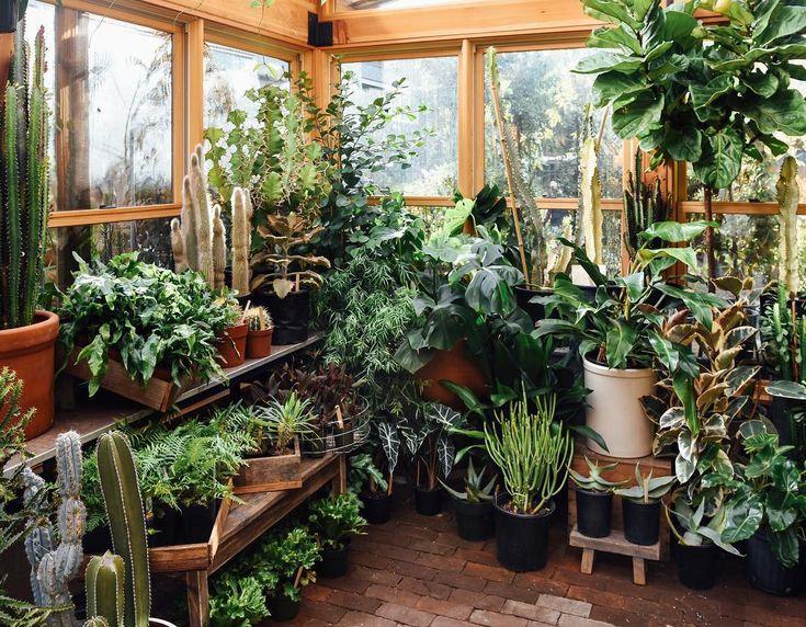 Магазин цветов зимний сад