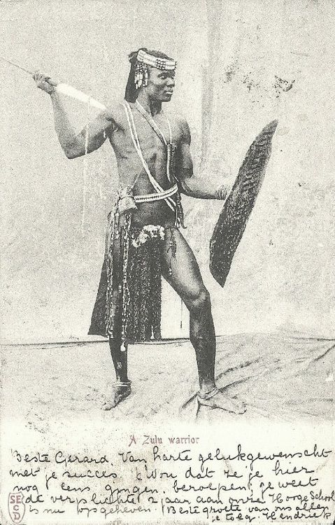A Zulu Warrior. Postcard, Union of South Africa.