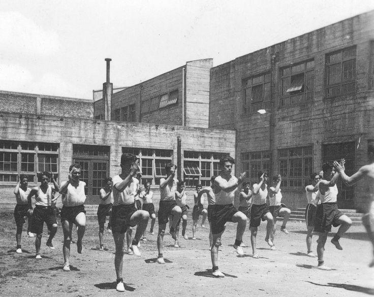 Resultado de imagen para educacion fisica en chile historia
